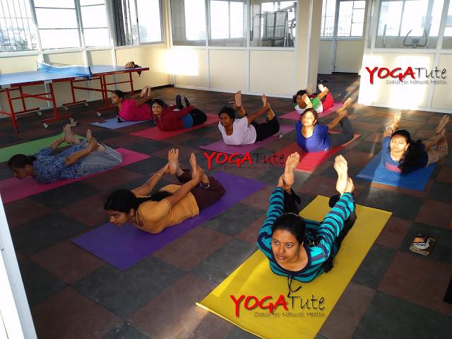 Dhanurasana - Bow Pose Asana - YogaTute Health