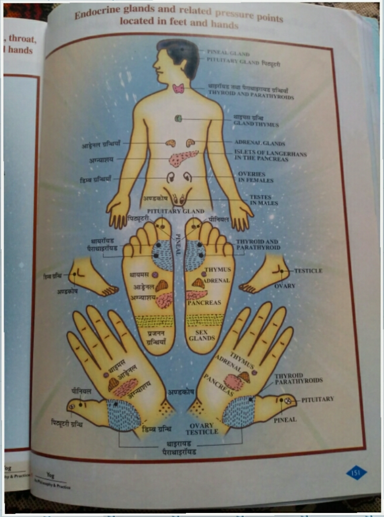 diabetes_acupressure_points