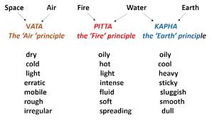 Ayurveda Principle
