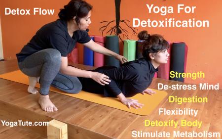 20 Minutes of Detox  Hatha Yoga Sequence | Destress Mind | Abdominal Health