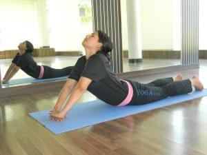 bhujangasana cobra pose asana 31  yogatute health
