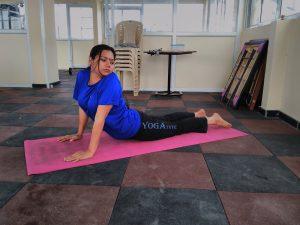 bhujangasana cobra pose  yogatute health